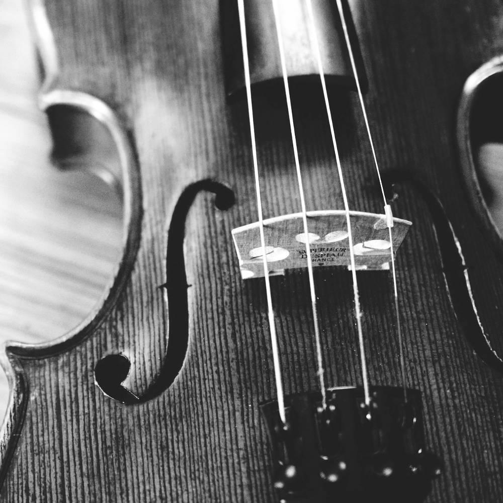 Unterrichtsfächer: Geige, Bratsche - Ausschnitt einer Geige